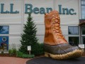 Llbean Free Return Label