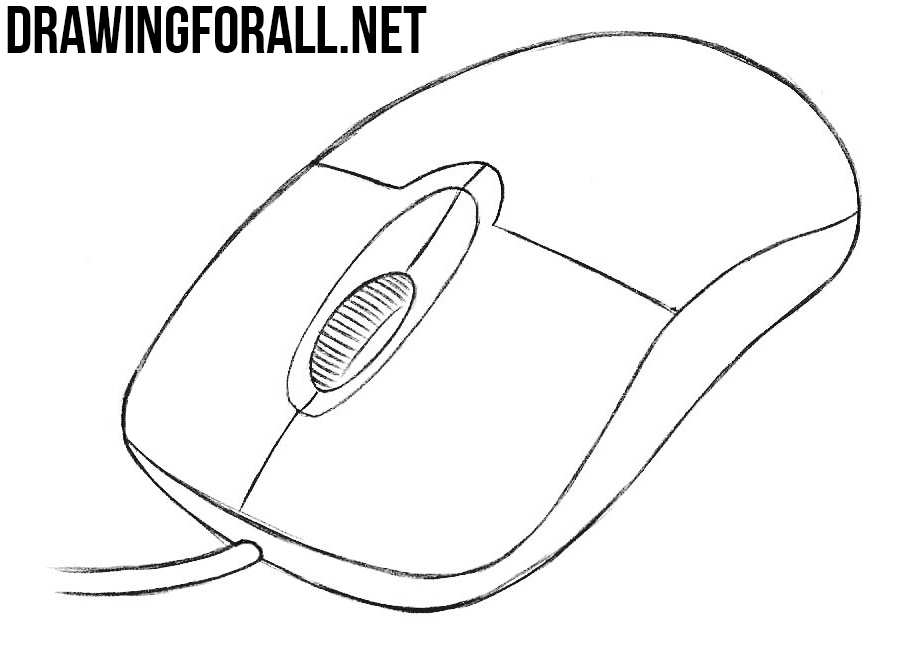 draw a computer mouse and label its parts