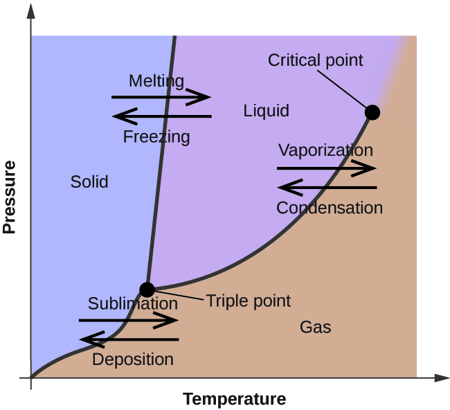 Label The Phase Diagram For Carbon Dioxide Label The Phase Diagram